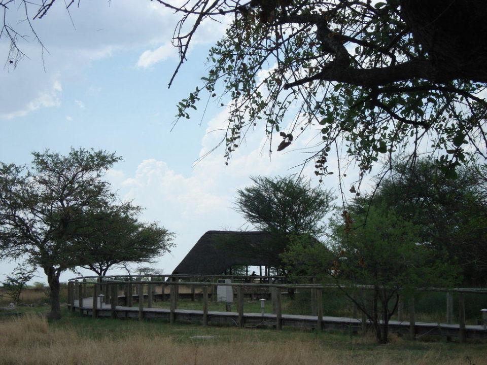 Blick auf die Sitzgelegenheit am Wasserloch Namutoni Camp
