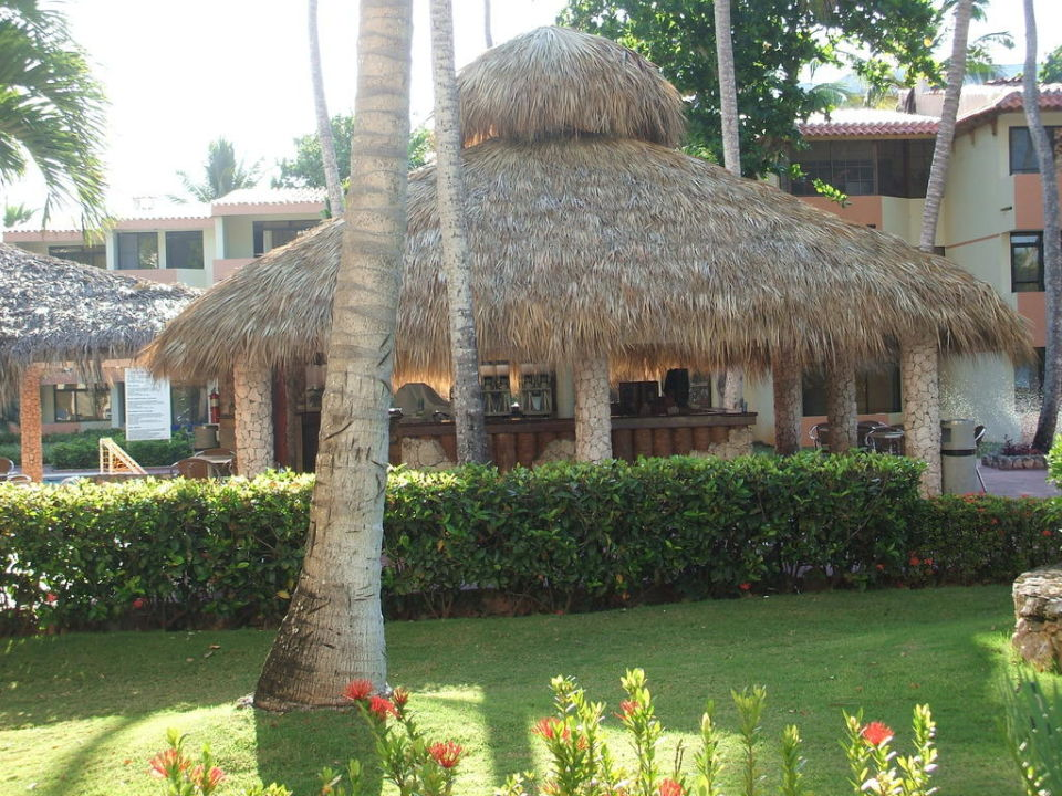 Bar Hotel Viva Wyndham Dominicus Beach