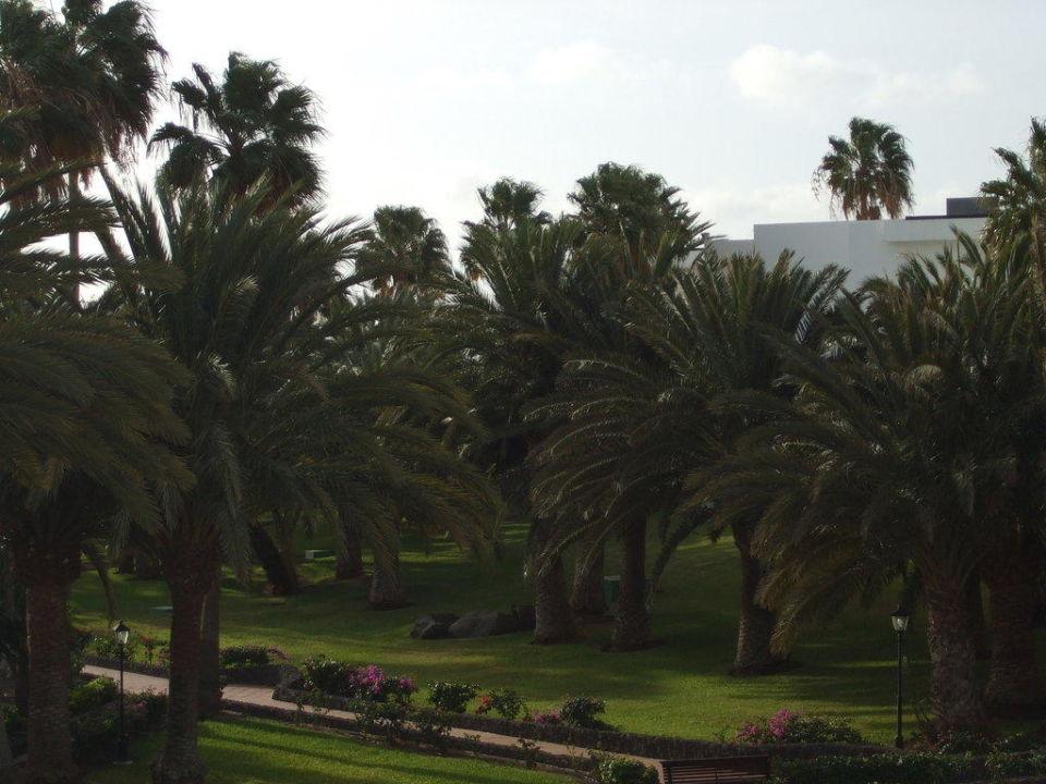 Gartenanlage Hotel Riu Paraiso Lanzarote Resort