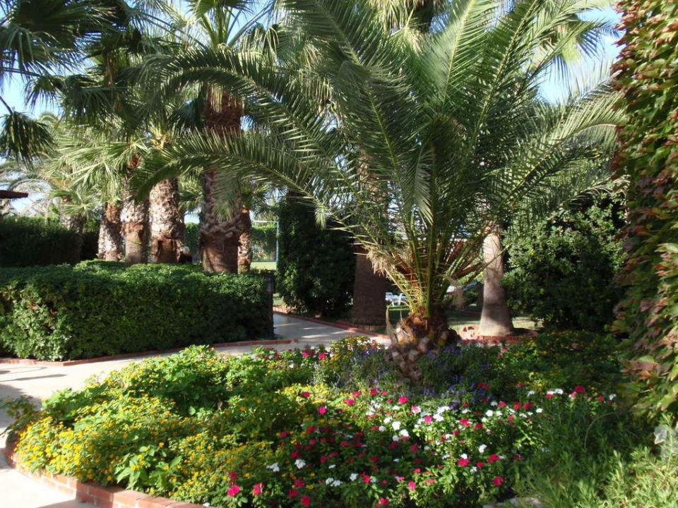 Garten Paloma Oceana Resort