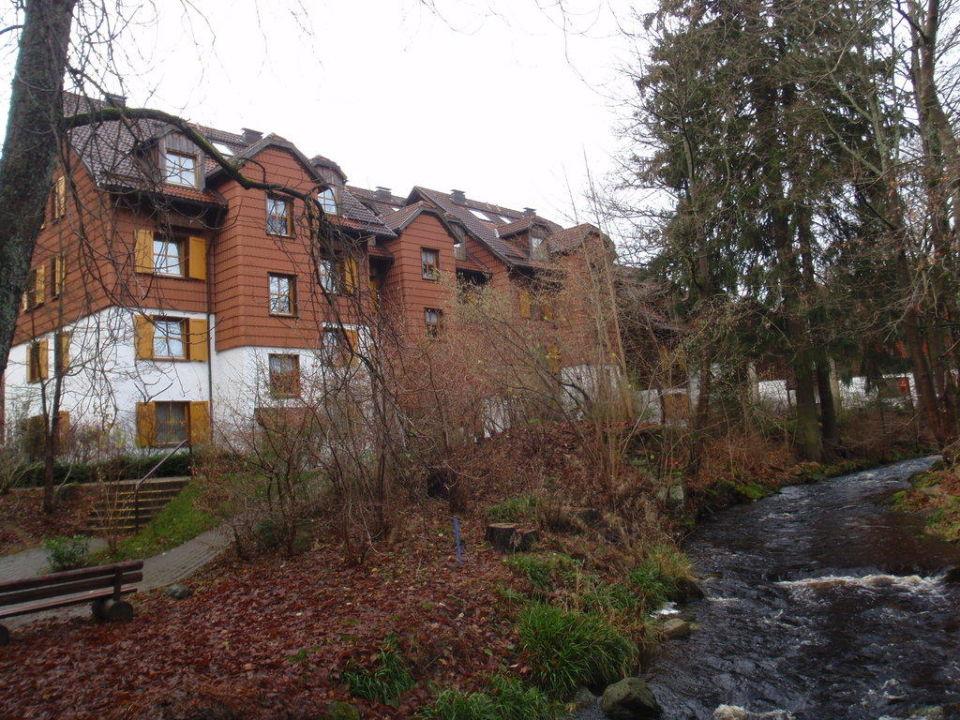 Kleiner Fluß hinter den letzten Häusern Hapimag Resort Braunlage