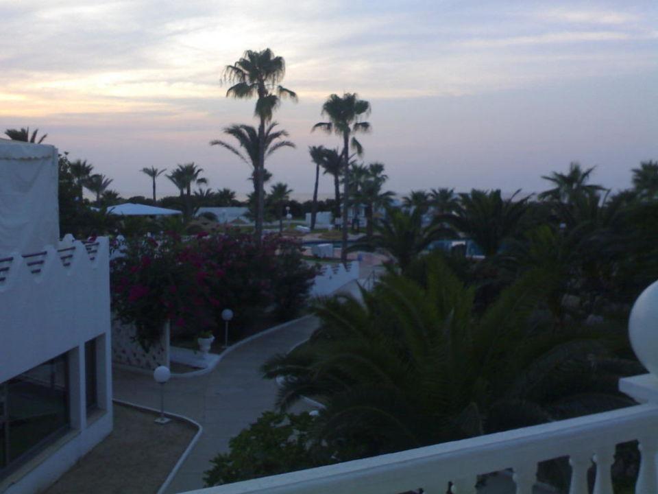 Ogród hotelowy Hotel Skanes El Hana