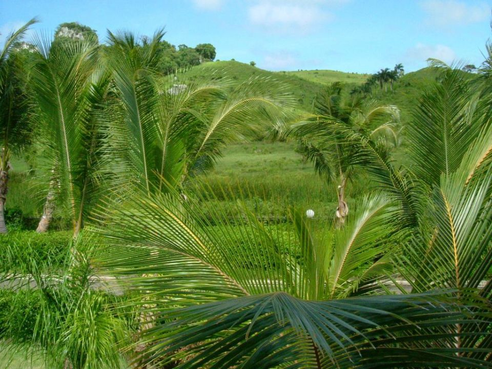 Balkonausblick RIU Mambo Playabachata Resort