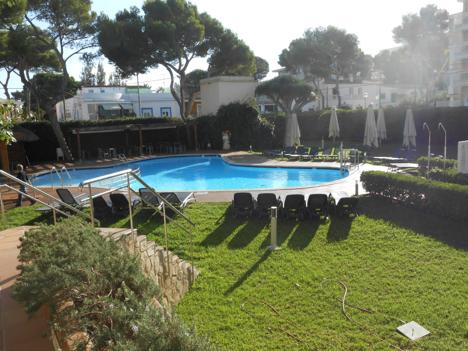 gartenanlage mit pool hotel aya platja de palma playa de palma holidaycheck mallorca. Black Bedroom Furniture Sets. Home Design Ideas