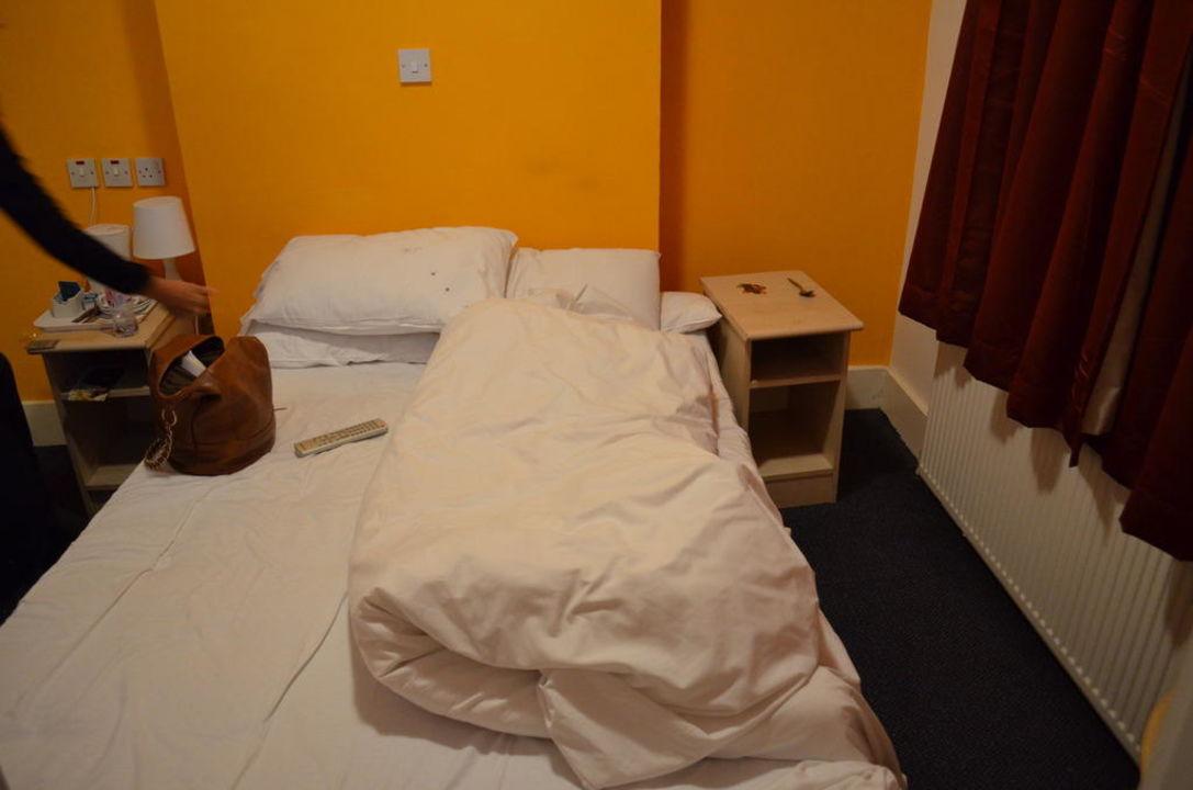 bild ekelhafte krabbelnde bettwanzen auf der matratze zu hotel euro clapham in london. Black Bedroom Furniture Sets. Home Design Ideas
