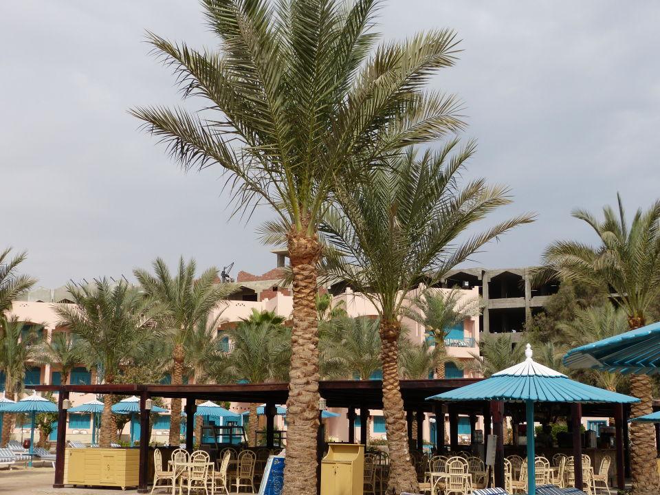 Die Baustellenidylle am Strand, sehr laut Hotel Le Pacha Beach Resort