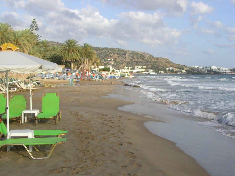 Hotel Zephyros Beach Kreta Stalis