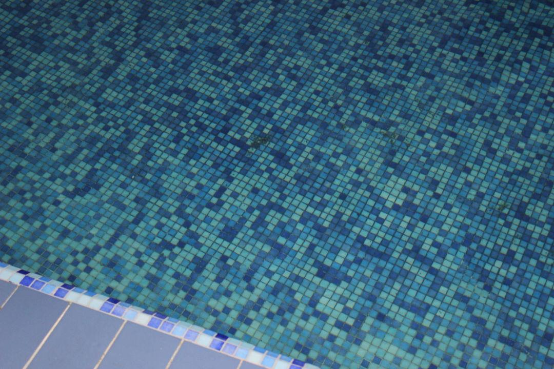 Black mold in Pool Memories Flamenco Beach Resort