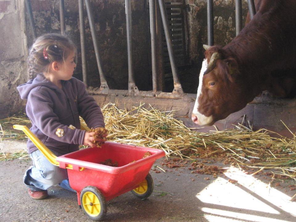 Füttern der Tiere  Apartments Jahreszeitenhof  (geschlossen)