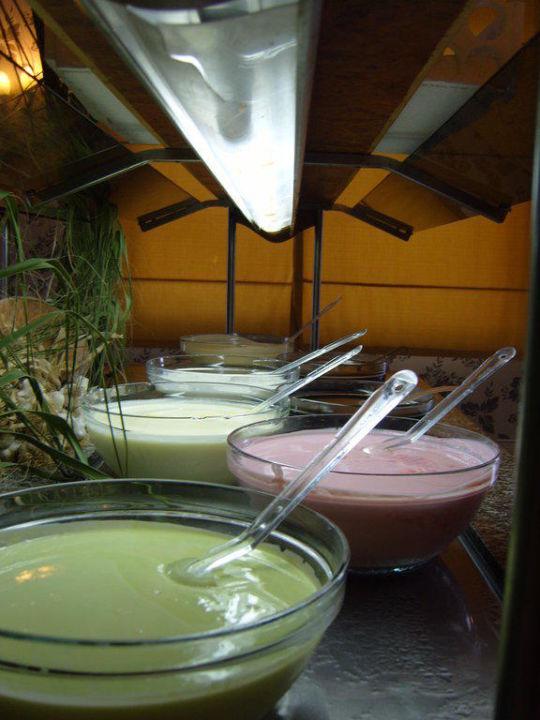 Joghurt in vielfältiger Auswahl Side Alegria Hotel & Spa