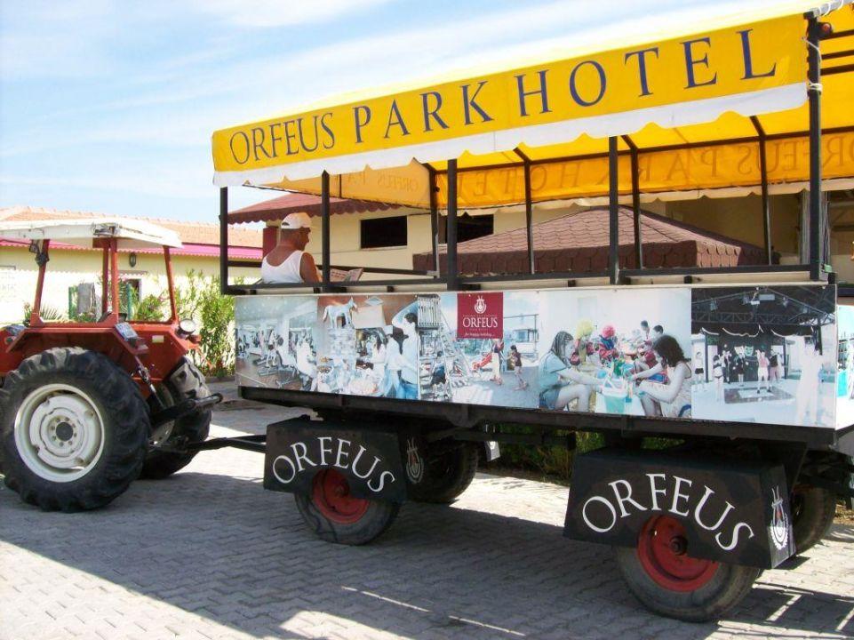 Transfer Hotel Orfeus Park