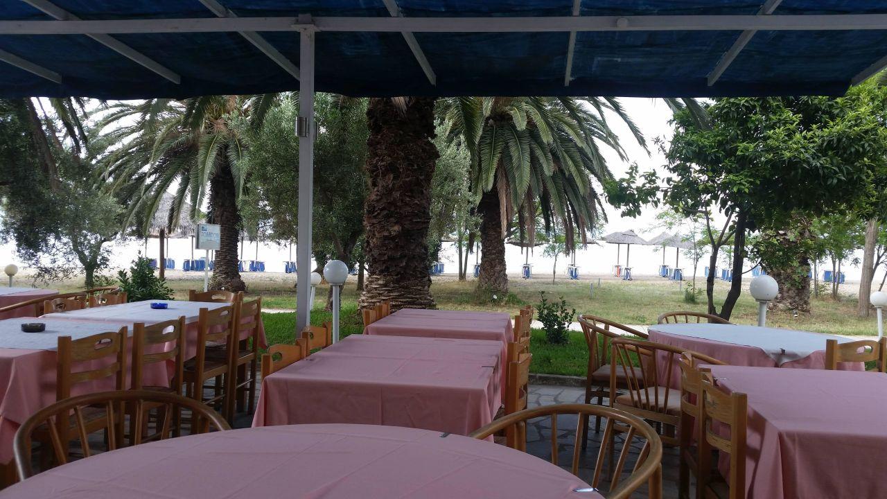 essensbereich auf der terrasse mit palmen hotel possidona beach gerakini holidaycheck. Black Bedroom Furniture Sets. Home Design Ideas
