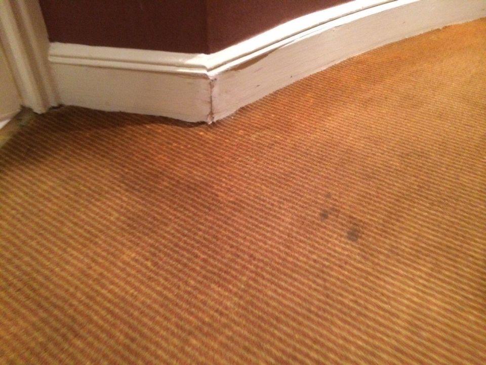 Bild Teppich verschmutzt und Fussleisten ;( zu Hotel