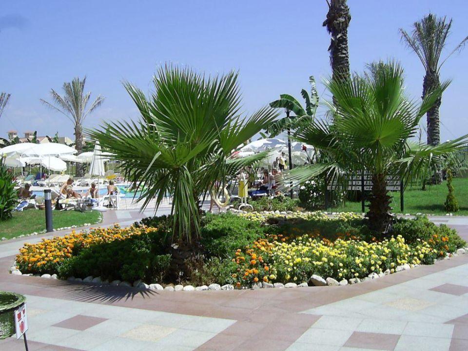 Belek Beach Resort - wunderbar gepflegte Aussenanlage! Belek Beach Resort Hotel