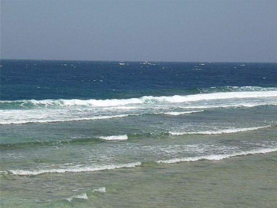 Blick auf das Riffdach Mövenpick Resort El Quseir