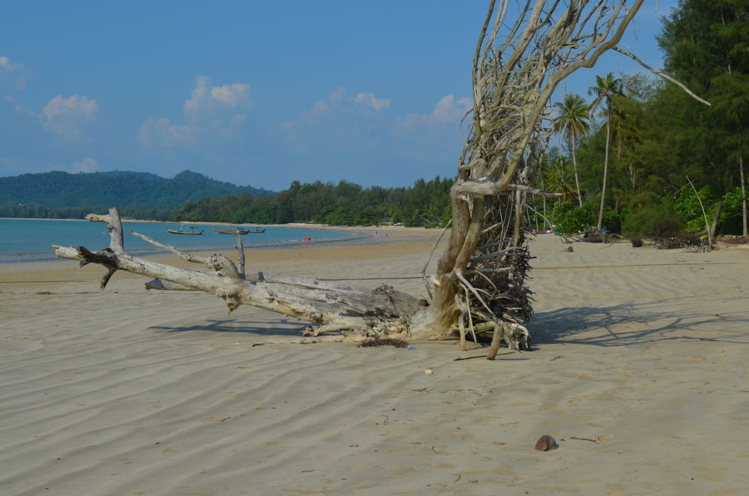 Holidaycheck Kantary Beach Hotel Khao Lak