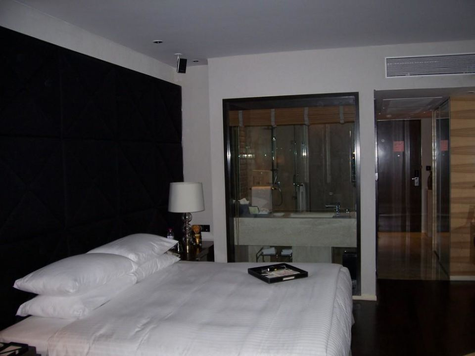 zimmer im hintergrund glaswand zum bad hotel taj lands. Black Bedroom Furniture Sets. Home Design Ideas
