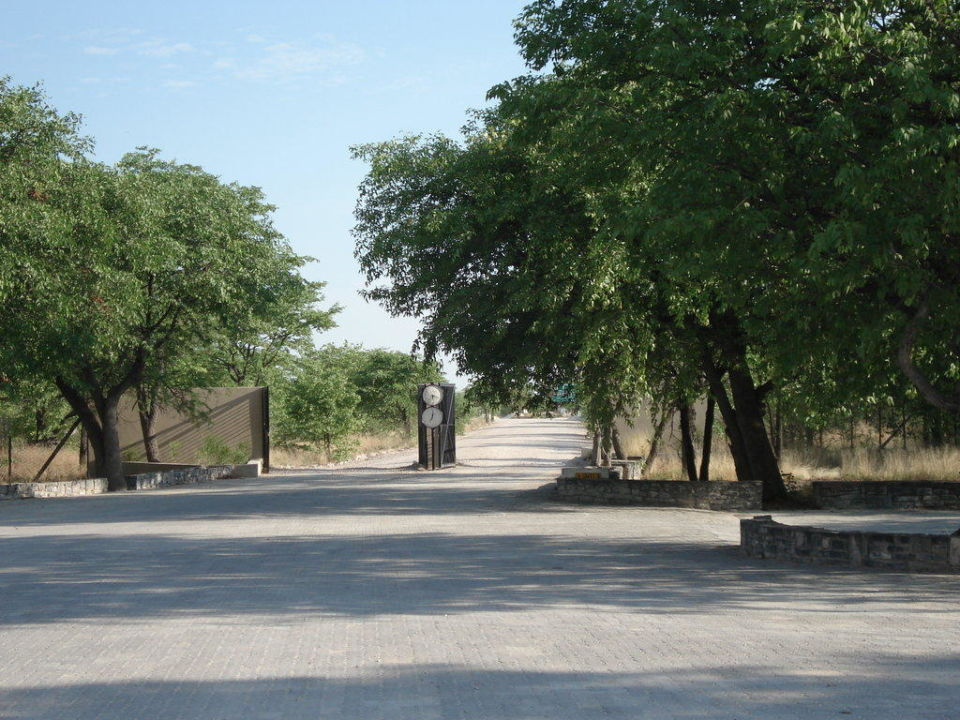 Ausfahrt aus dem Tor Hotel Halali Camp