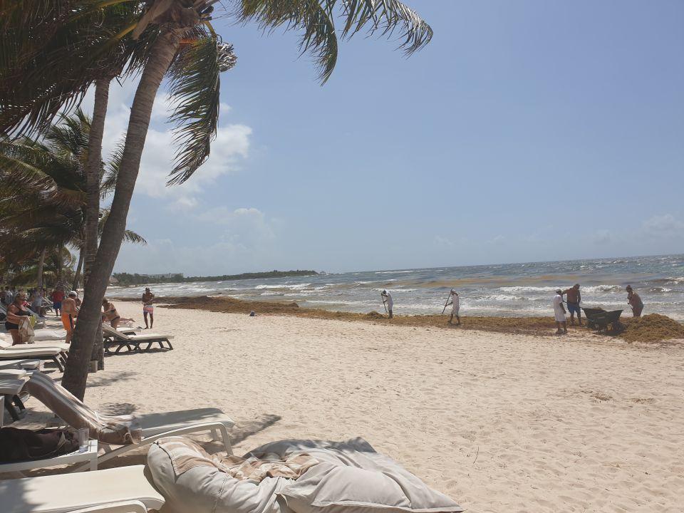 Strand Catalonia Royal Tulum Beach & Spa Resort - Adults only
