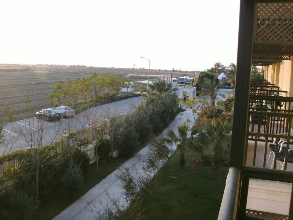 Ausblick vom Zimmer Crystal Paraiso Verde Resort & Spa