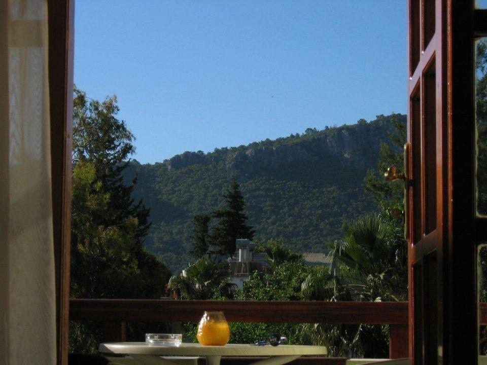 Blick vom Bett durchs Fenster Hotel Kami