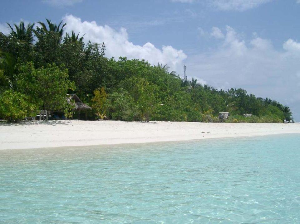 Strand Summer Island Maldives
