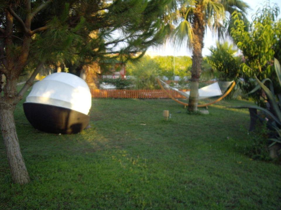 Bild gartenanlage mit teich zu hotel club aqua plaza in for Gartenanlage mit teich