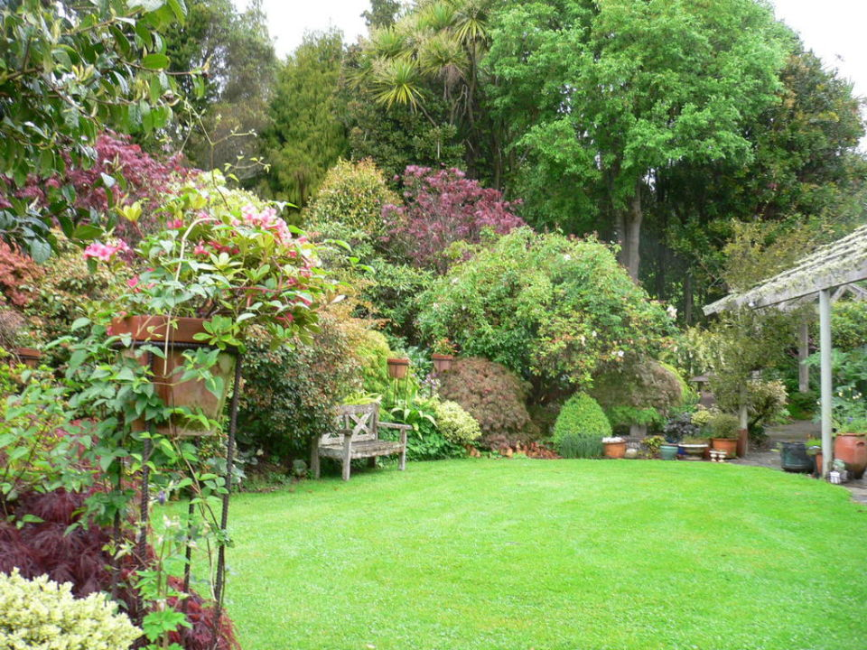 """Garden scene at Kamahi near Waitomo, New Zealand"" Kamahi ..."