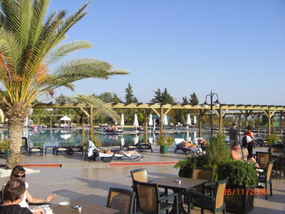 Außenanlage mit Blick zum Pool Arcanus Side Resort