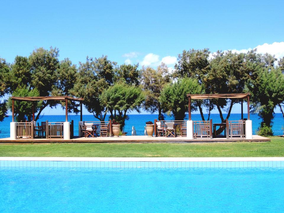 bild gartenanlage mit pool zu hotel arion in kolymvari. Black Bedroom Furniture Sets. Home Design Ideas