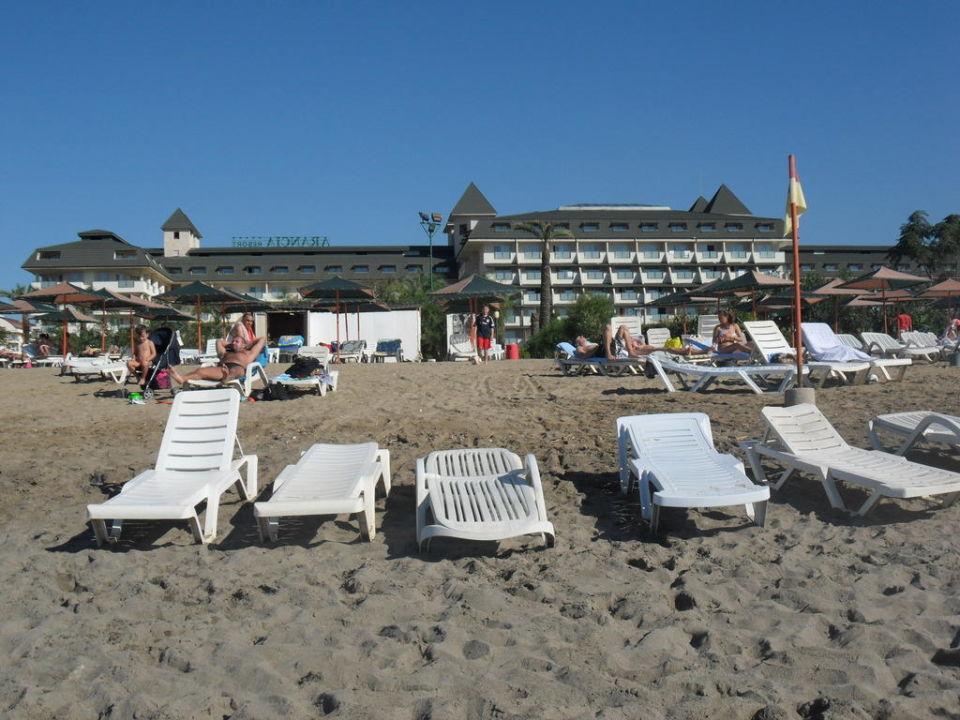 Hotel vom Strand aus MC Arancia Resort