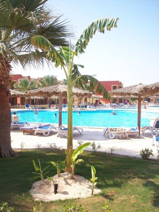 Rundweg um den Pool  Tulip Resort (Vorgänger-Hotel – existiert nicht mehr)