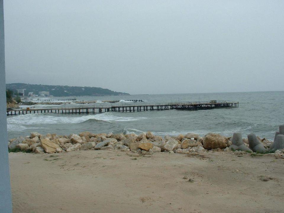 Meerblick nach links Hotel Dolphin Marina
