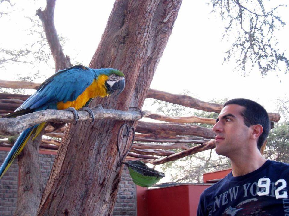 Con la mascota Hotel El Huacachinero