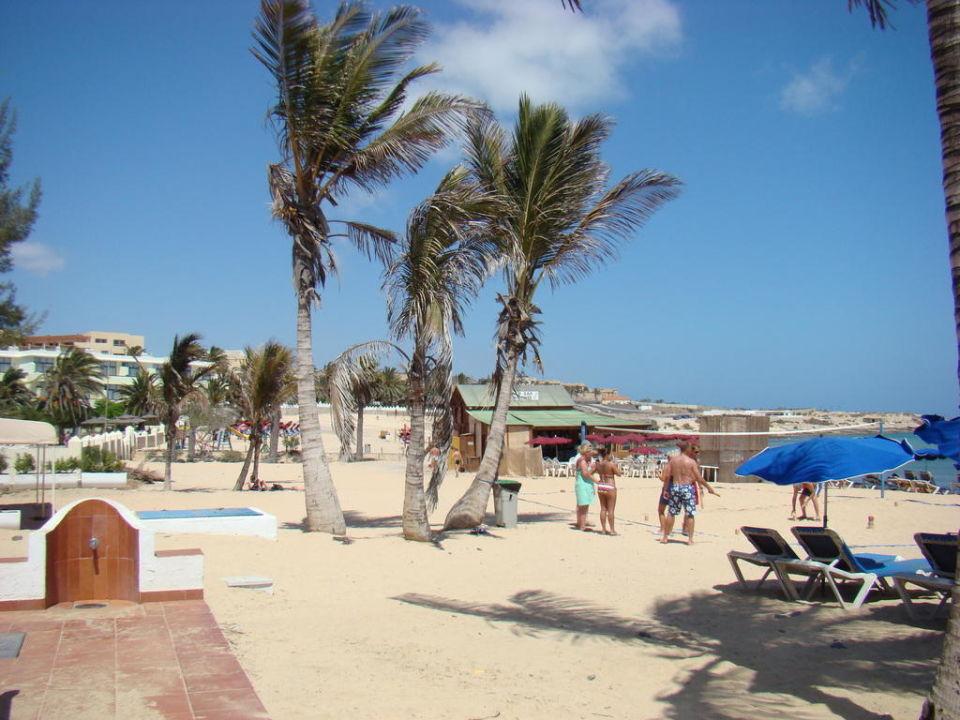 Am Strand! allsun Hotel Barlovento