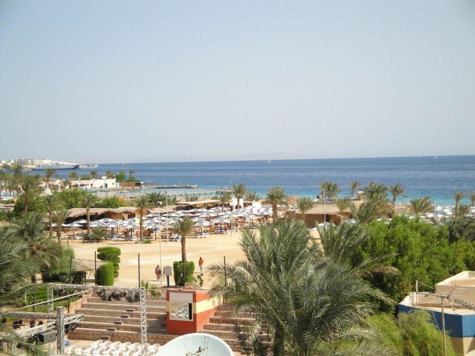 Teren hotelu Hotel Seagull Beach Resort