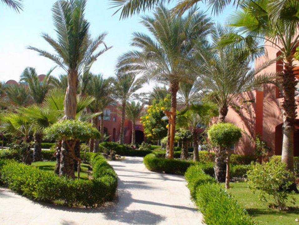 Garten TUI MAGIC LIFE Sharm el Sheikh