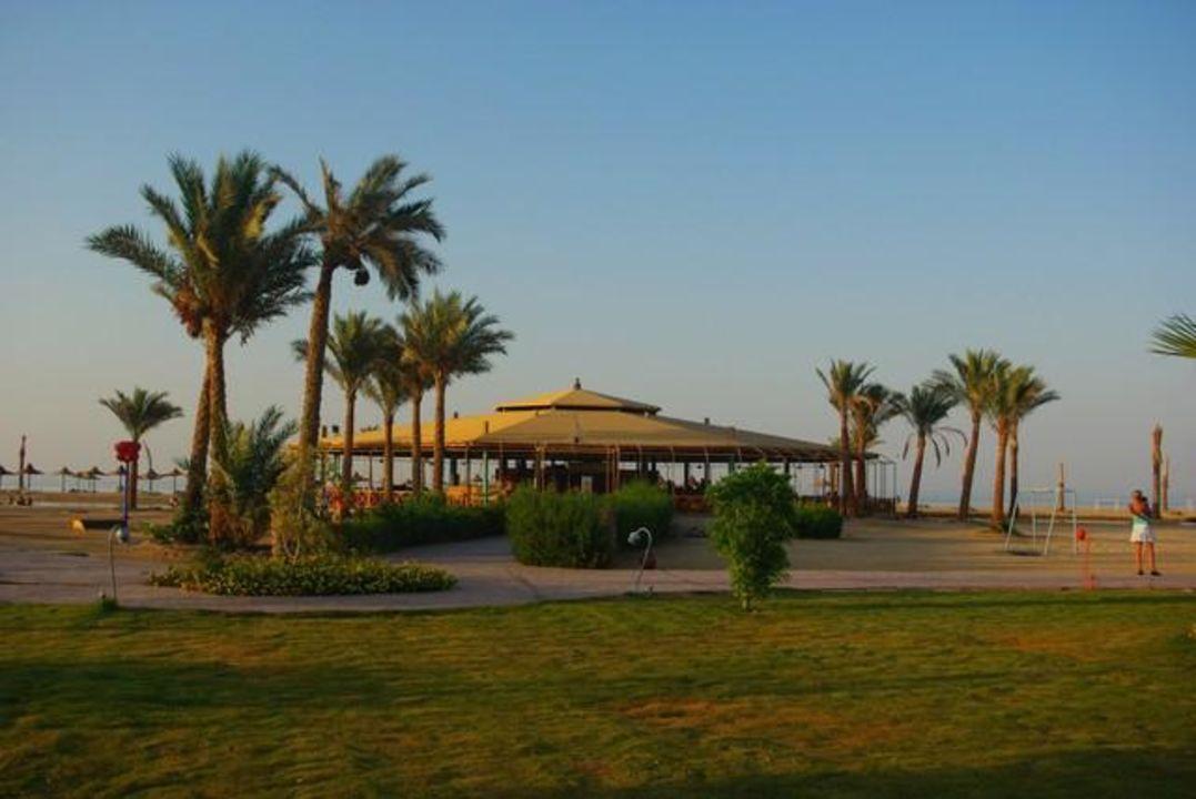 Bar na plaży Hotel Harmony Makadi Bay