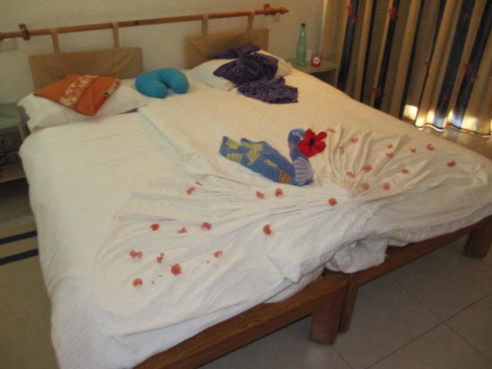 Das Zimmer 246 Hotel Eden Star