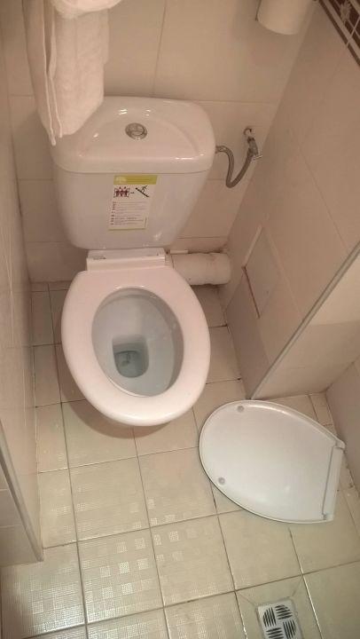 Toilette defekt mit Scharmhaar\