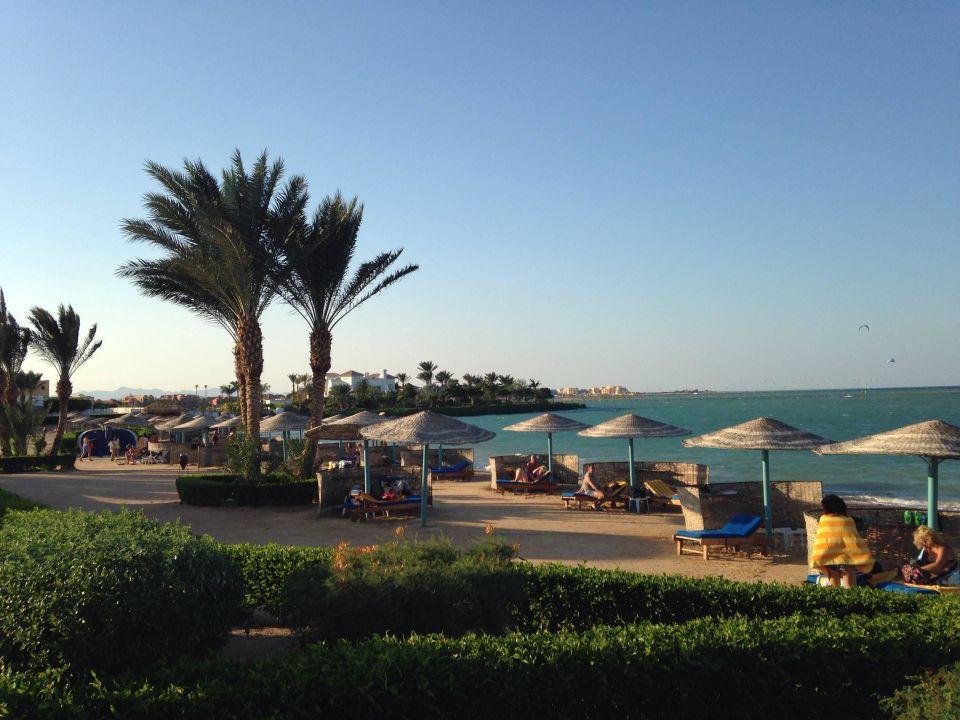 Bellevue Beach Hotel El Gouna Holidaycheck