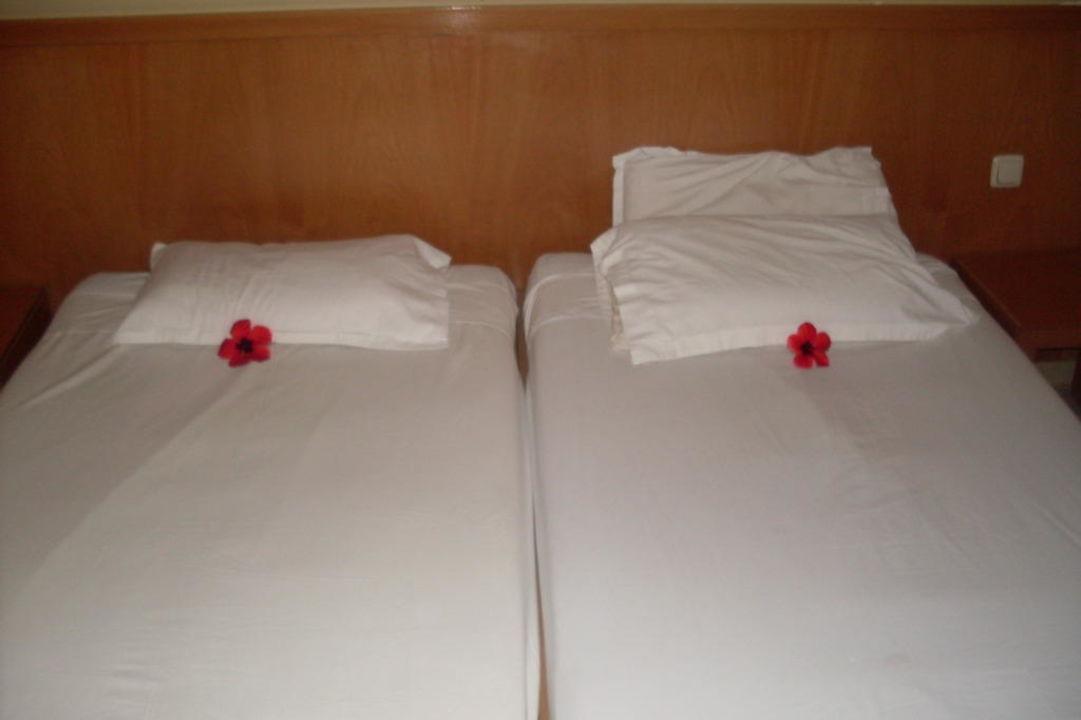Bett Hotel Thalassa Mahdia