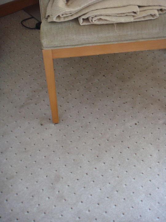 Quot Flecken Auf Teppich Im Wohnraum Quot Korumar Hotel De Luxe