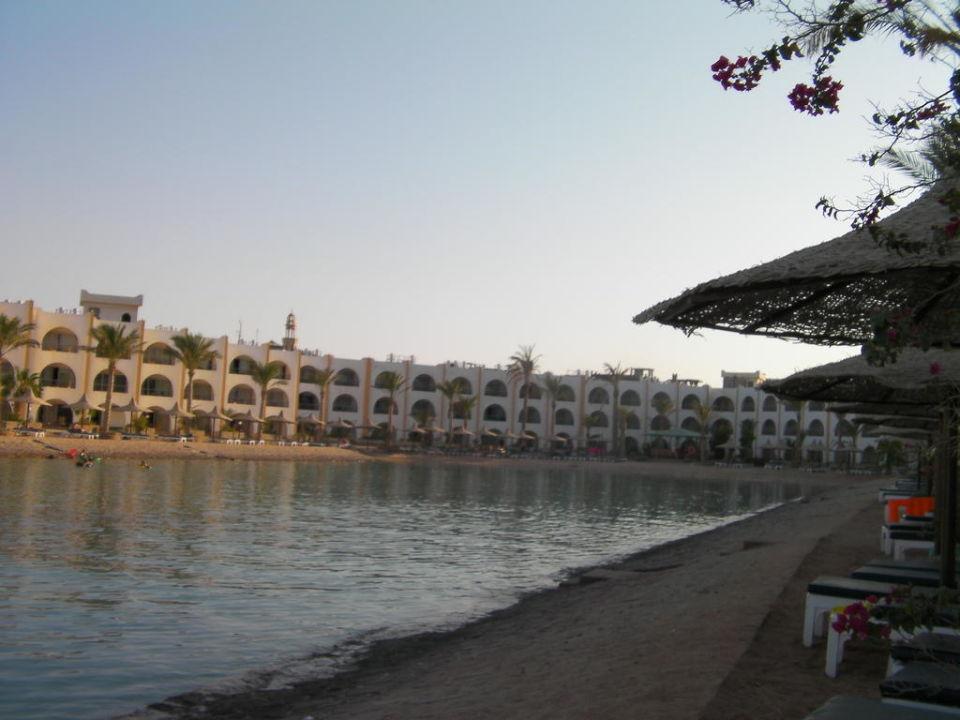 Sicht vom Pool Arabia Azur  Resort