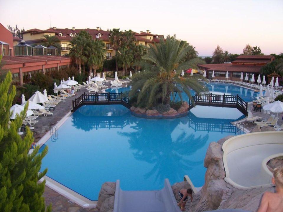 Pool Hotel Alba Resort