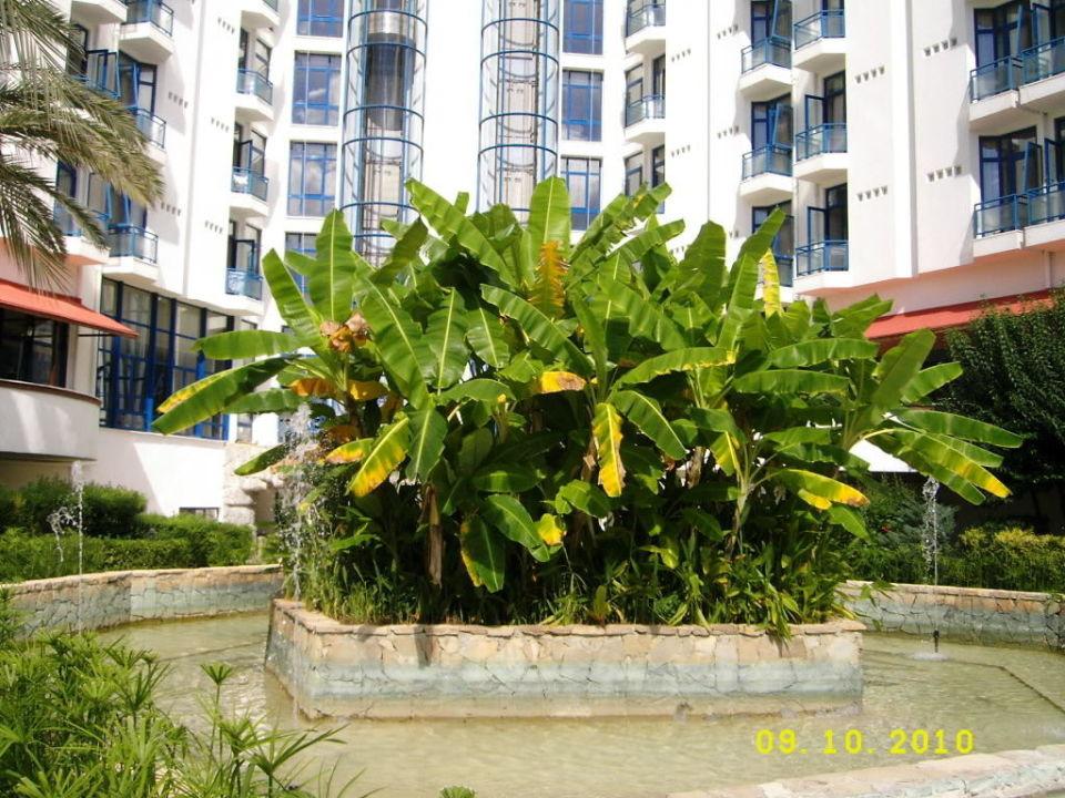 Kleine Insel! Green Max Hotel