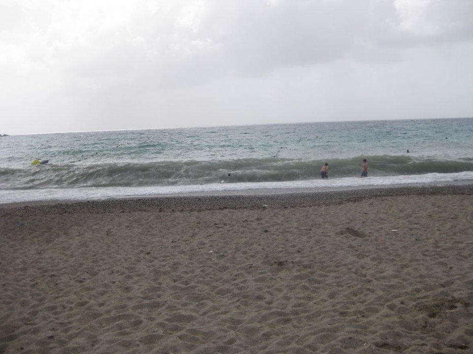Strand Hotel Gardenia Beach