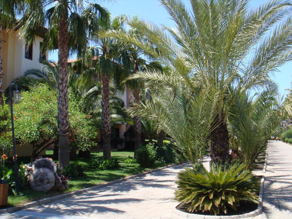 Gartenanlage Club Grand Side