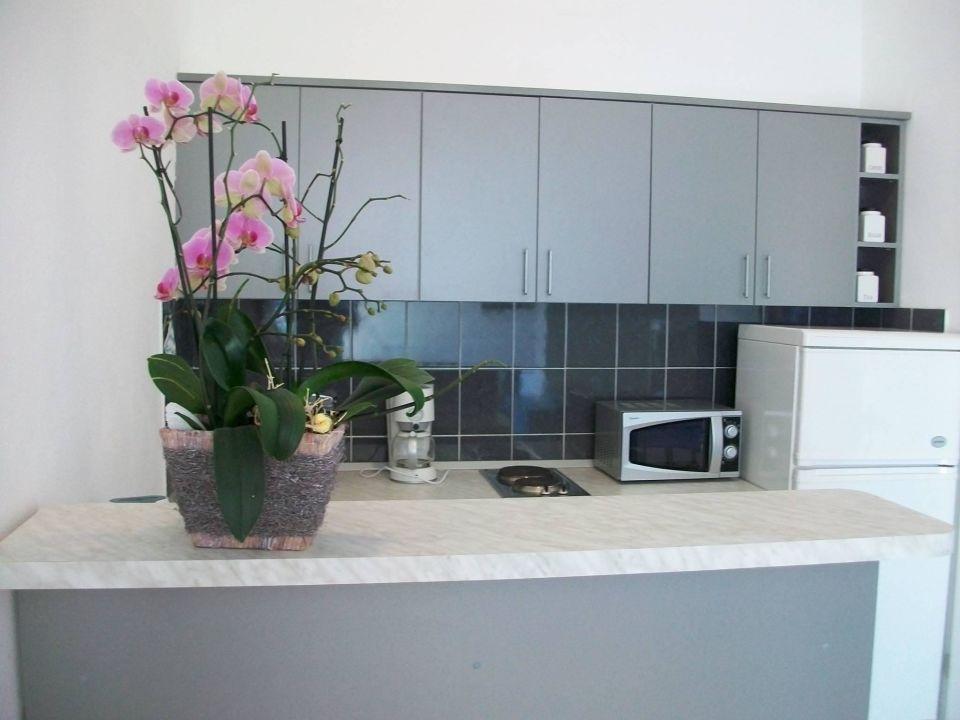 Küche Apartments Villa Anka