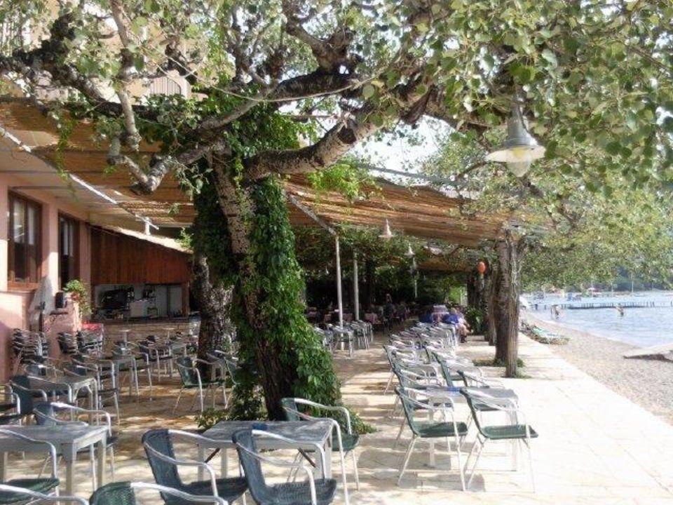 Beach bar. Z tyłu restauracja Hotel Dassia Beach